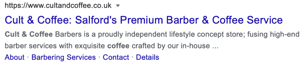 An Example of A Google Search for a Local Business and Their Bio