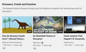 Youtube SEO example with the natural history museum ranking on YouTube under dinosaurs, fossils and evolution on trending page